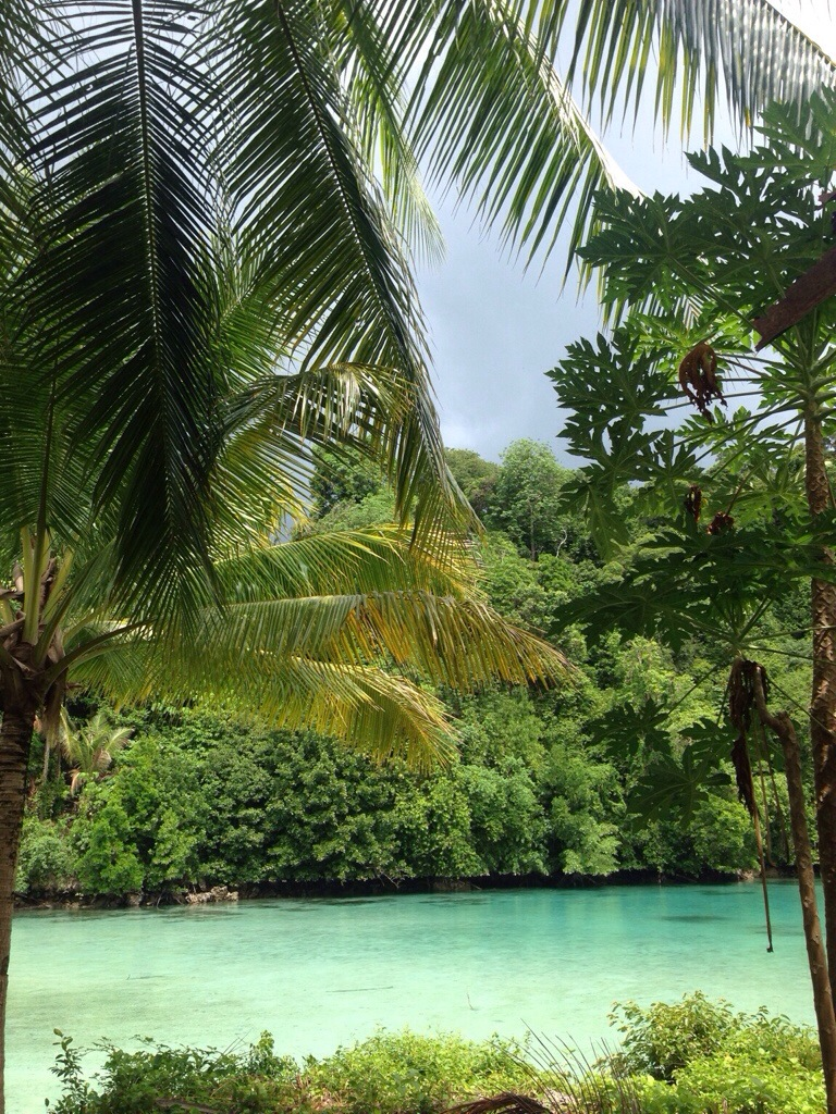 Kakaban Lagoon