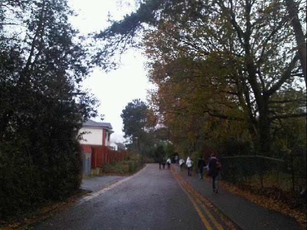 pathway to uni